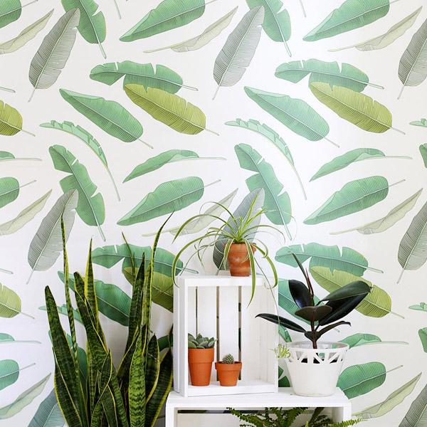 Green Wallpapers Peel and Stick Removable