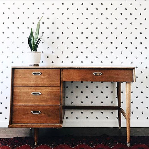 One plant on a mid-century desk against polka-dot wallpaper
