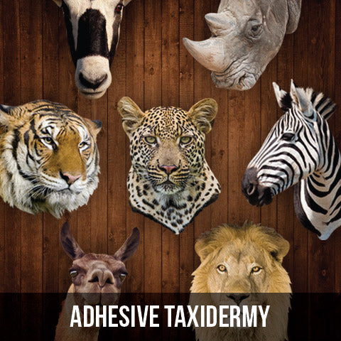 Wall Decals - Adhesive Taxidermy Collection