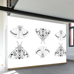 Eastern Moths Wall Mural
