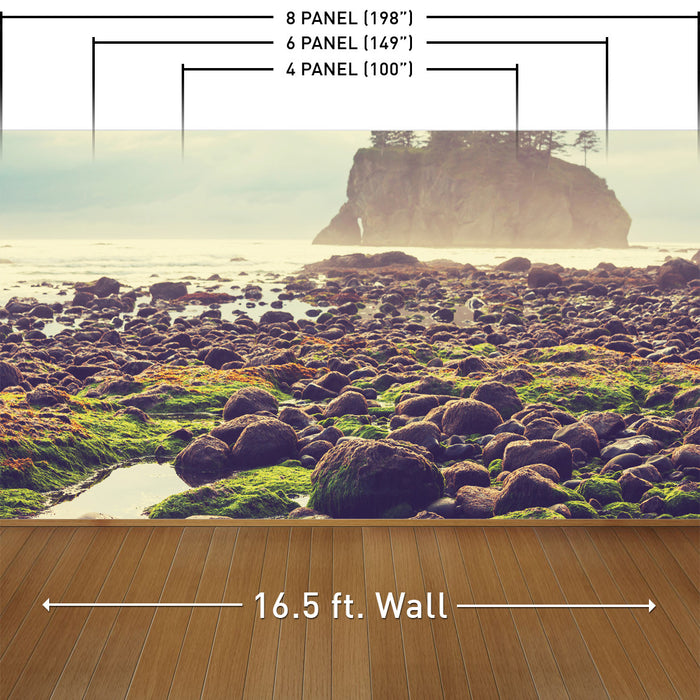 Olympic National Park Wall Mural