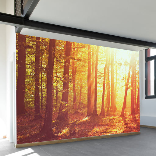 My Sylvan Paradise Wall Mural by Walls Need Love?