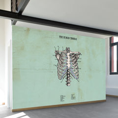The Human Thorax Wall Mural