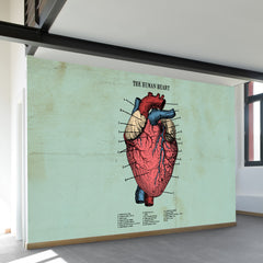 The Human Heart Wall Mural