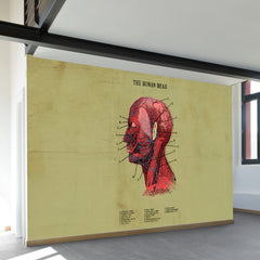 The Human Head Wall Mural