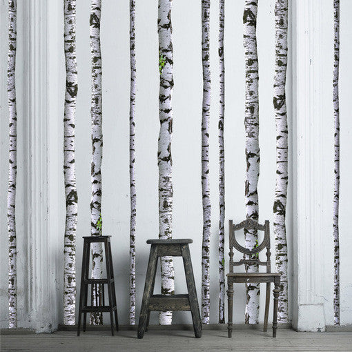 Birch Tree Decals on white painted wall.