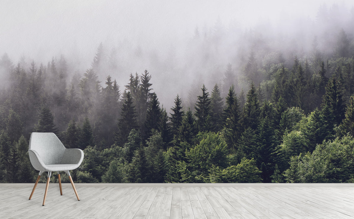 Evergreen Forest In Misty Clouds Wall Mural Misty Forest