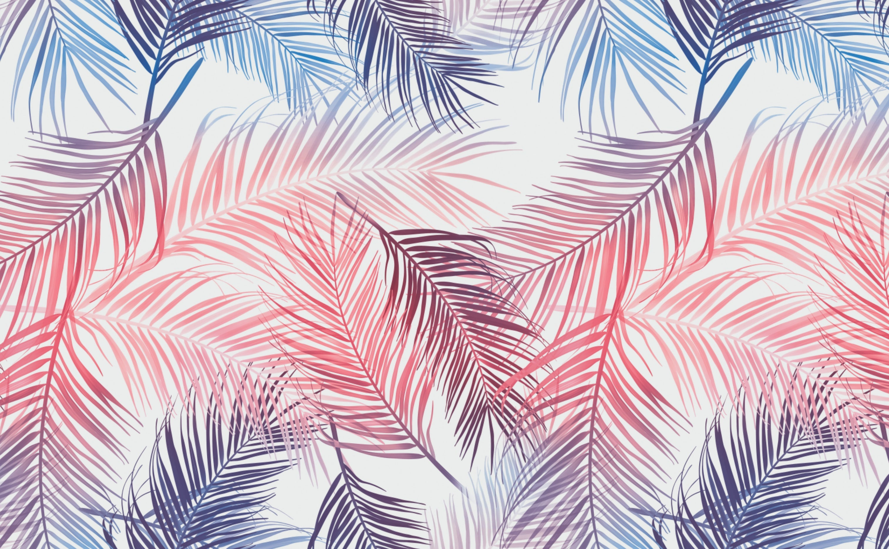 Palm Leaves Wallpaper For Walls Rainbow Palms Find the best free stock images about tropical leaves. palm leaves wallpaper for walls rainbow palms