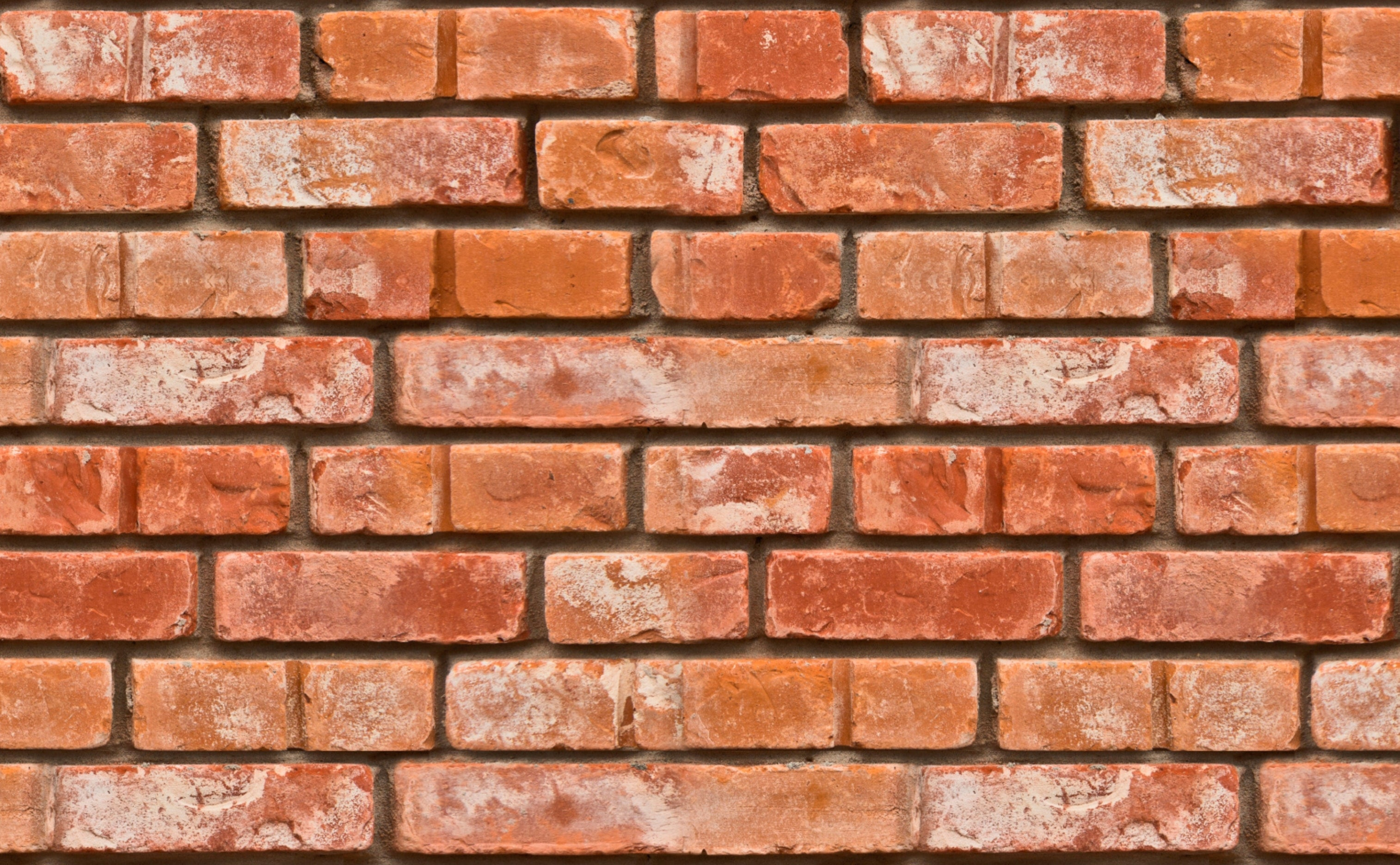 w0267 1s Realistic Bricks Removable Peel and Stick Wallpaper Repeating Pattern Sample 1