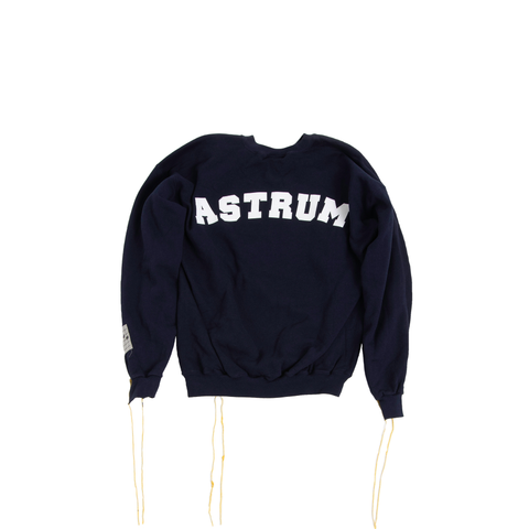 COLLEGIAN REVERSE CREWNECK (BLUE/NAVY)