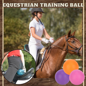 Equestrian Training Ball