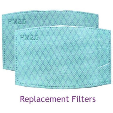 Replacement Filters for KN95 Facemask (2)