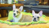Warm Washable Hot Dog Bed, Various Sizes, Pet Cushion, Sofa Mat Blanket. - KronoWorld Secure Online Shopping