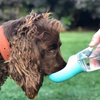Hydro Pup Water Bottle ™️