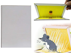 Your Brand Rodent Taps - Mouse Traps Insect Rodent Lizard Rat Catcher Adhesive Sticky Glue Pad