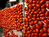 Roma Tomatoes - Triple B's OWN