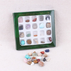20pcs/Set Mix of Natural Healing Stones and Fossils Specimen