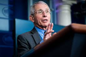 Why Are We Following Fauci?