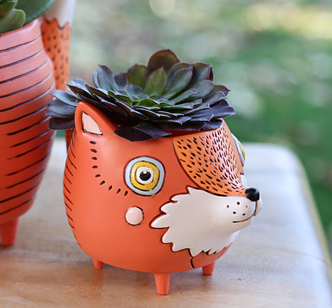 Baby Foxy PLanter
