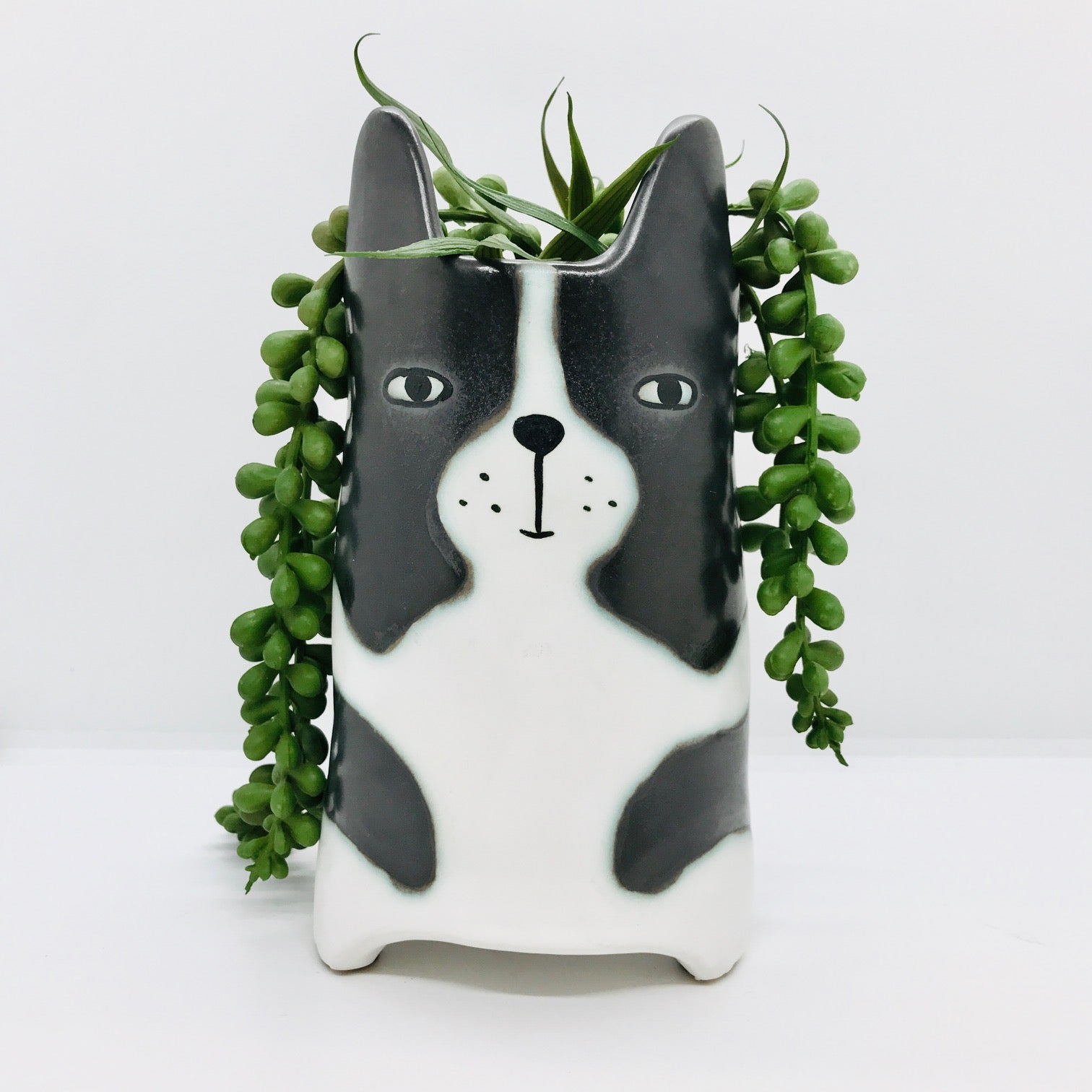 Ulster Weavers Emporium Huxley Cat Flower Pot