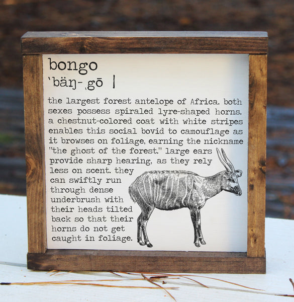 Bongo Definition