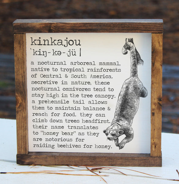 Kinkajou Definition