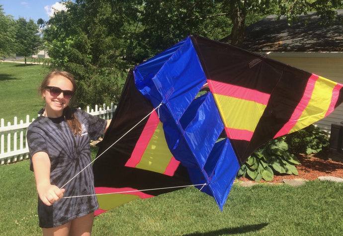 6 foot Conyne/compound kite in pink, black, yellow and blue
