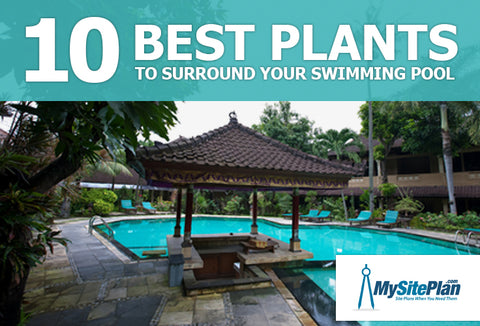 10 best plants to surround your swimming pool my site plan for Swimming pool site plan
