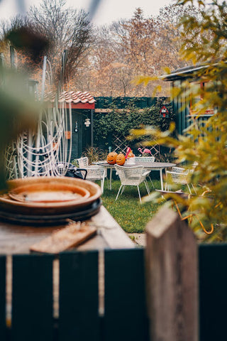 fall backyard