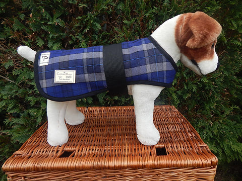 Blue Tartan Dog Coat