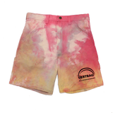 TIE DYE DERTBAG ART & RECREATION RESEARCH PAINTER SHORTS