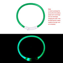 Load image into Gallery viewer, USB Charging Pet Dog Collar Rechargeable LED Tube Flashing Night Dog Collars Luminous Safety Puppy Cat Collar With Battery