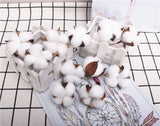 Artificial Cotton Head - 6 pieces