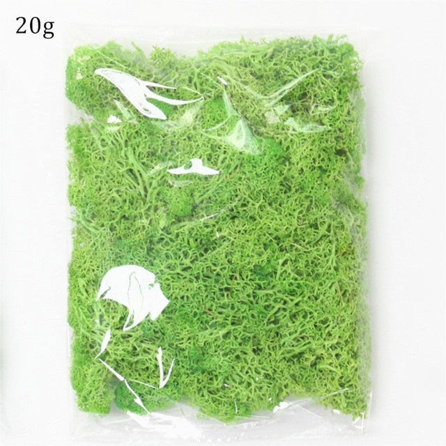 Artificial Everlasting Moss - 1 pack
