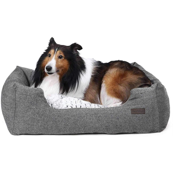 Nancy's - Luxury Dog Bed - For dogs up to 20 KG - Cozy Dog Sofa - 80 x 60 x 26 cm