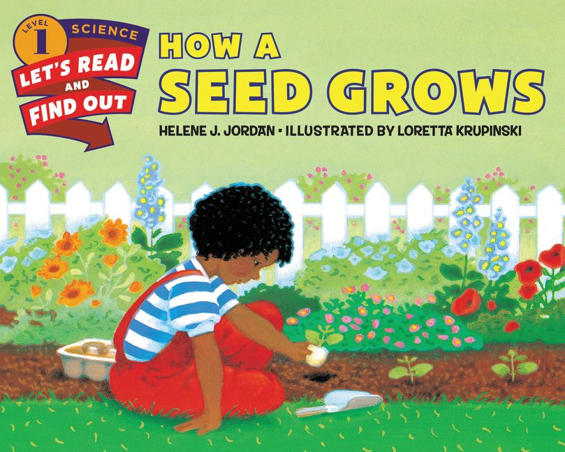 How a Seed Grows by Helene J. Jordan, illustrated by Loretta Krupinski