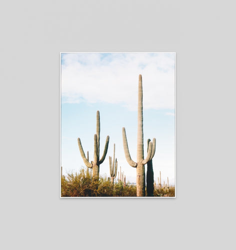 Splendour Canvas Art - Arizona View