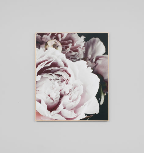Splendour Canvas Art - Dark Bloom
