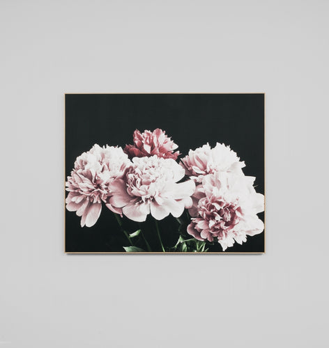 Splendour Canvas Art - Dark Peonies