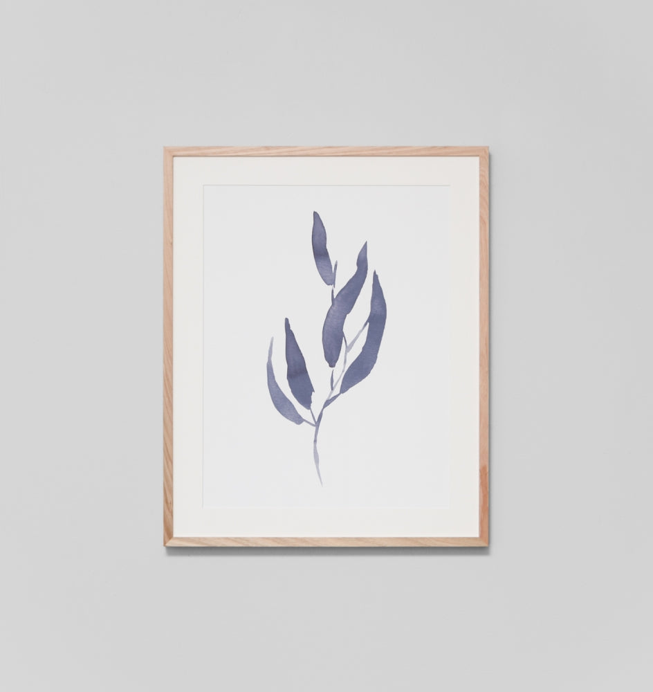 Splendour Framed Art - Eucalyptus Leaves 1