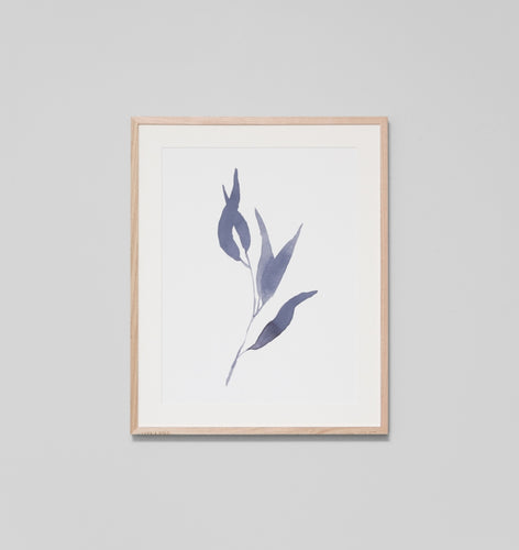 Splendour Framed Art - Eucalyptus Leaves 2