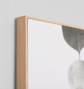 Splendour Canvas Art - Eucalyptus I