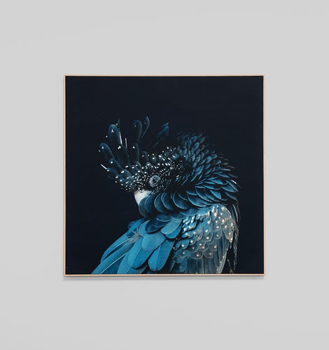 Splendour Canvas Art - Blue Cockatoo