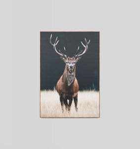 Splendour Canvas Art - Meadow Deer