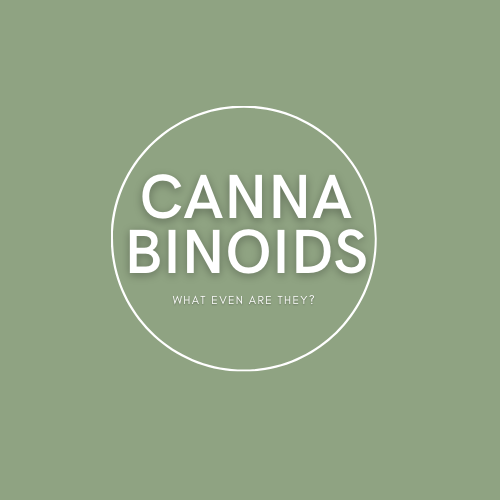 Cannabinoids: what are they?