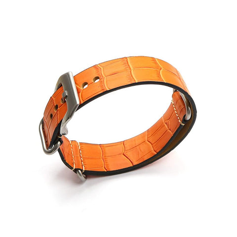 Image of Orange / Red / Blue / Green / Brown Leather Watch Band With Silver / Black Buckle (TWS069)