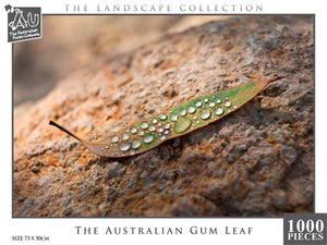 Australian Gum Leaf, 1000pc