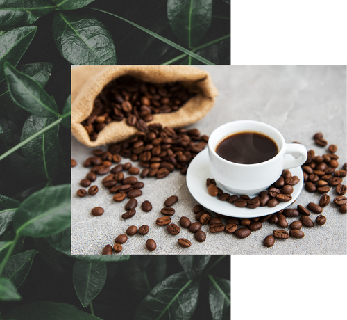 Amongi's Coffee: The highest quality coffee, directly from the producer.