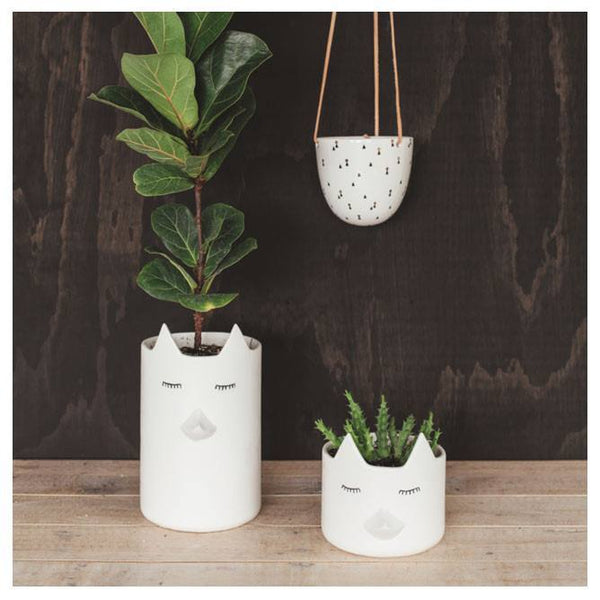 Planter Hanging Lights Pattern