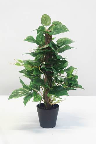 Potted Pothos Faux Plant